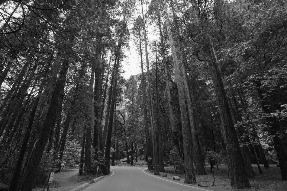 california-17